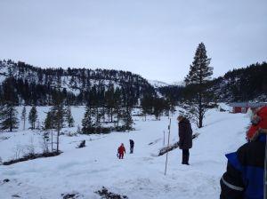 Morro i snøen